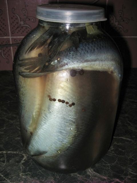 Сельдь соленая в домашних условиях за 2 часа